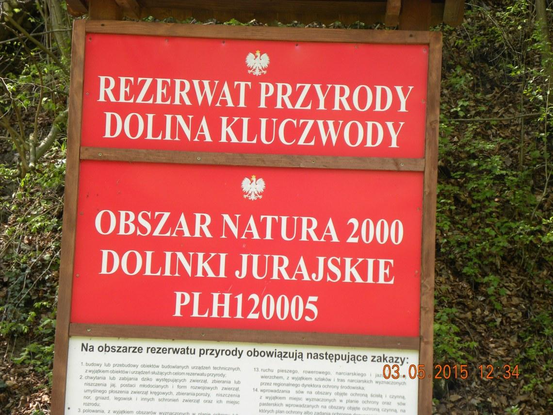2015 242